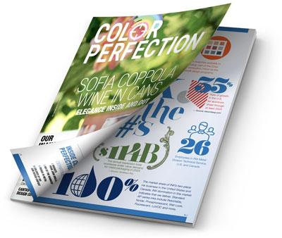 Color Perfection Magazine mockup